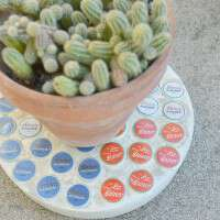 EASY, cute, and quick concrete trivet with a little Texas flag out of bottlecaps on top!