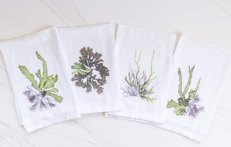 Beautiful and unique coastal home decor items - Tea towels by Green Sea Designs! www.greenseadesigns.com