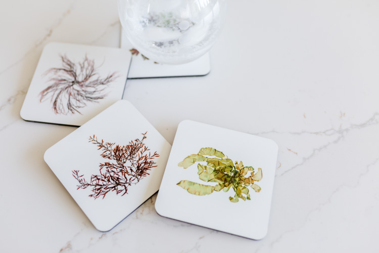 Beautiful and unique coastal home decor items - Set of coasters by Green Sea Designs! www.greenseadesigns.com